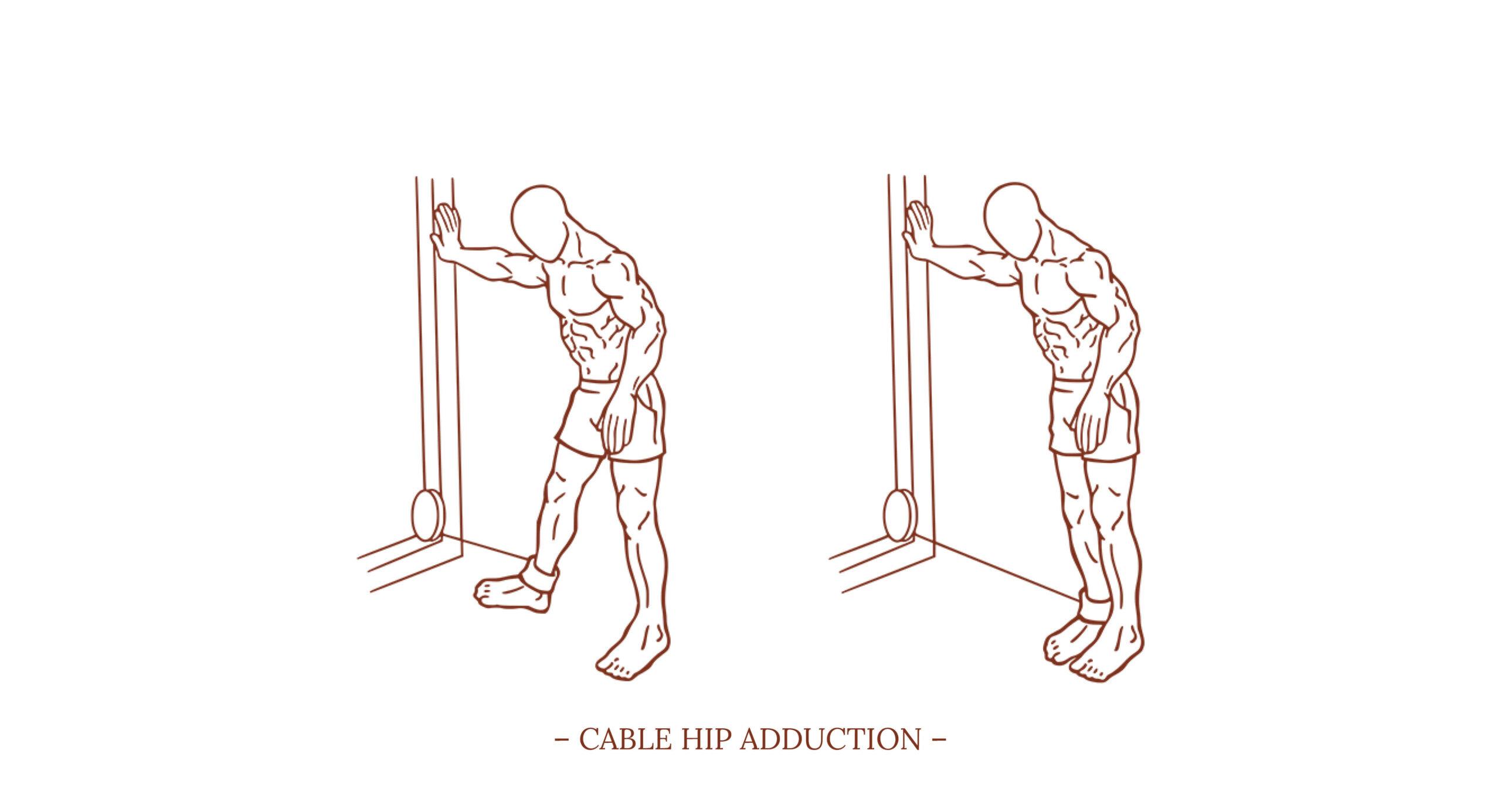 Cable Hip Adduction Illustration