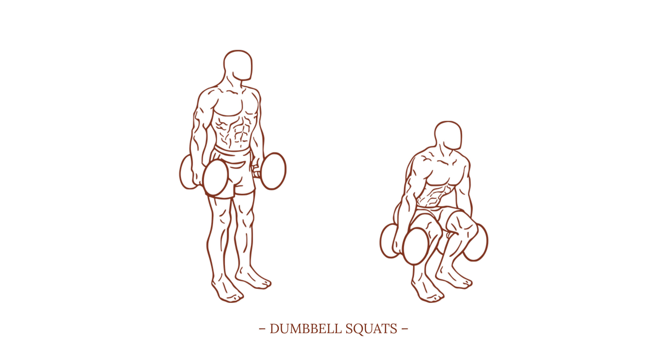 Dumbbell Squats Illustration