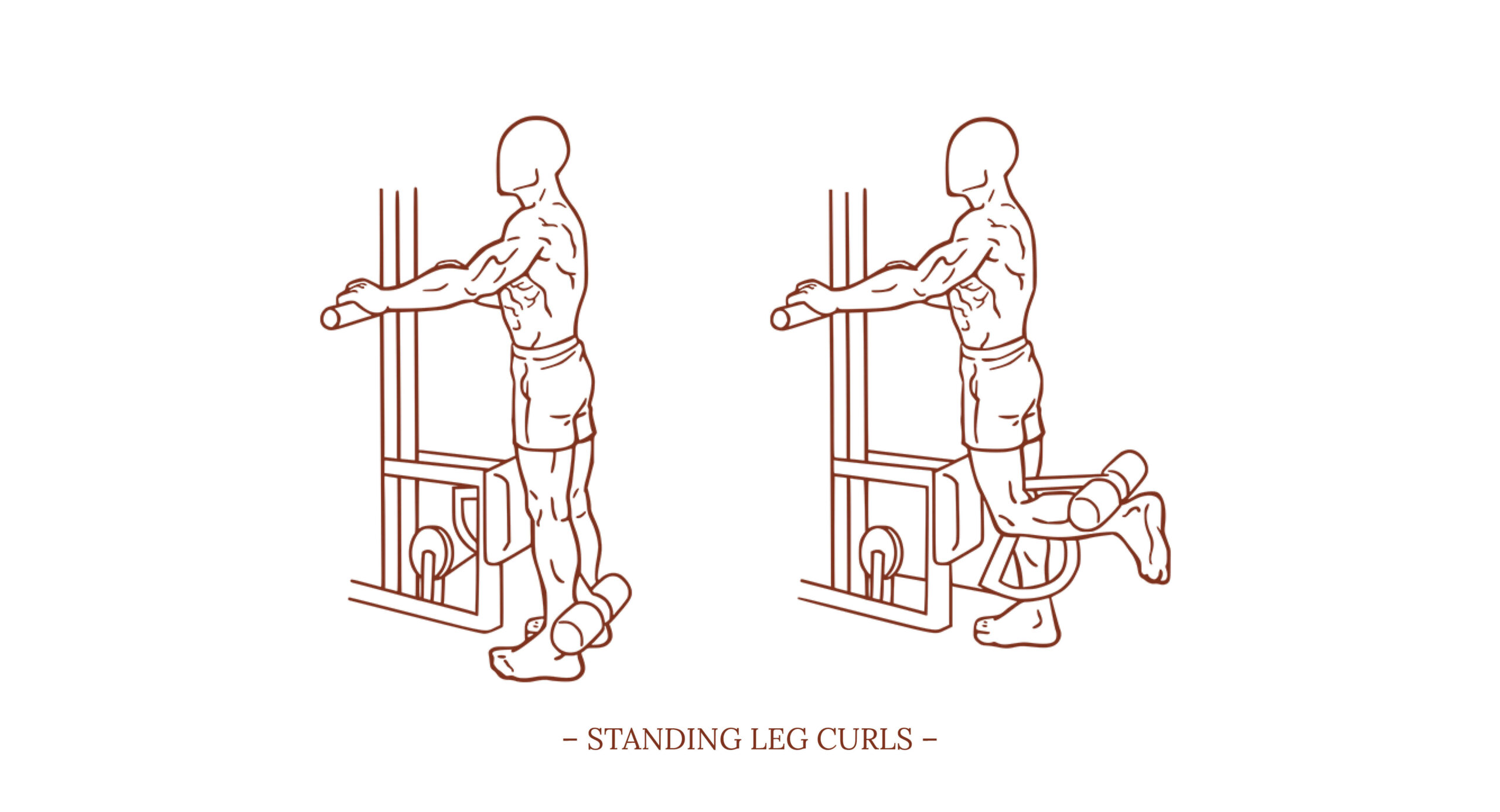 Standing Leg Curls Illustration