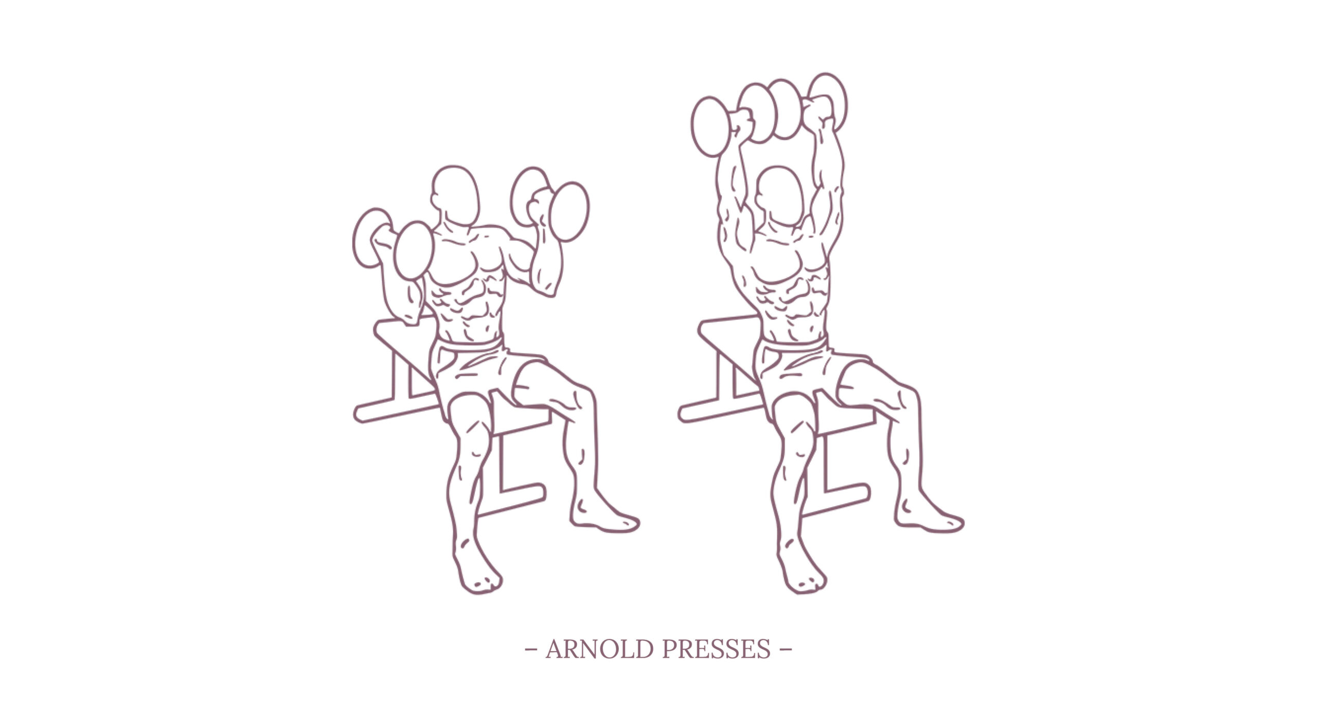 Arnold Presses Illustration