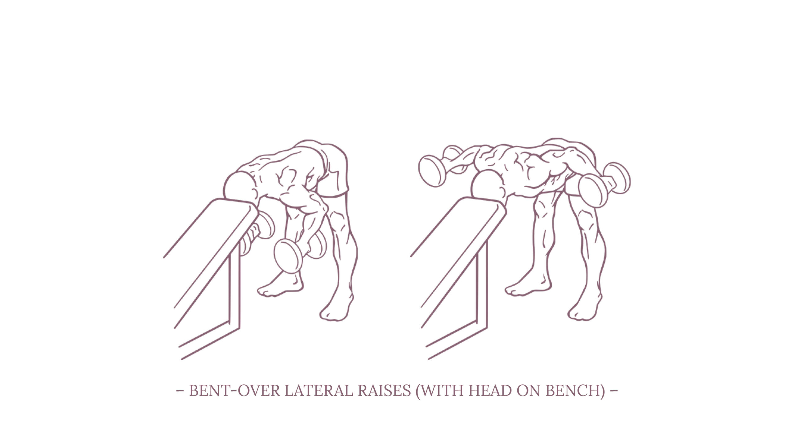 Bent-Over Lateral Raises Illustration