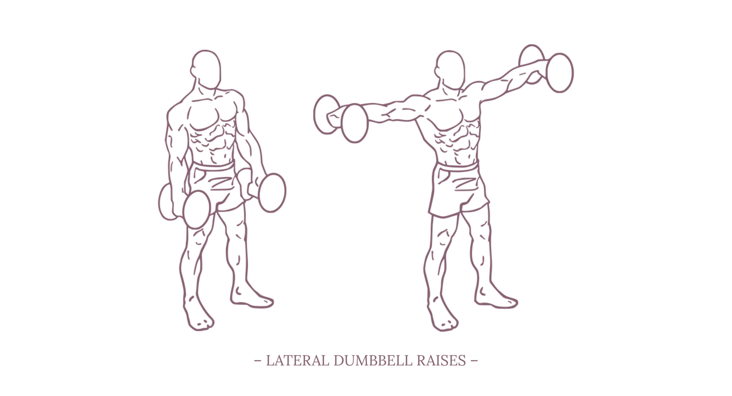 Lateral Dumbbell Raises Illustration