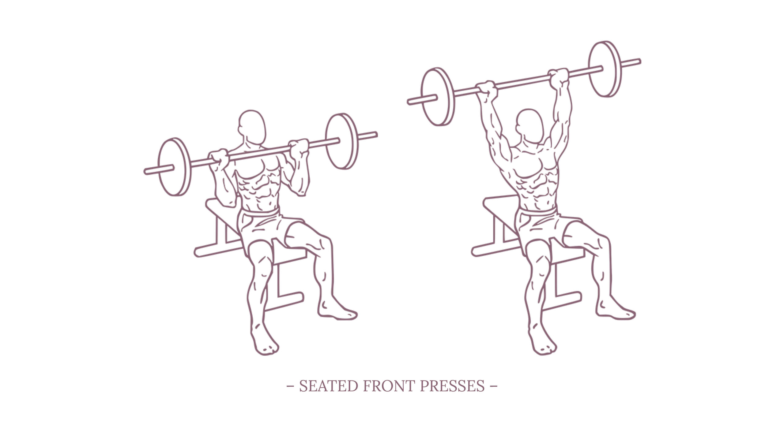 Seated Front Presses Illustration
