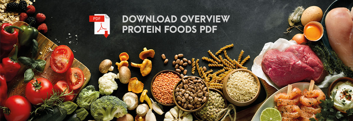Michael Loehr - The Power of Protein - Protein Content PDF
