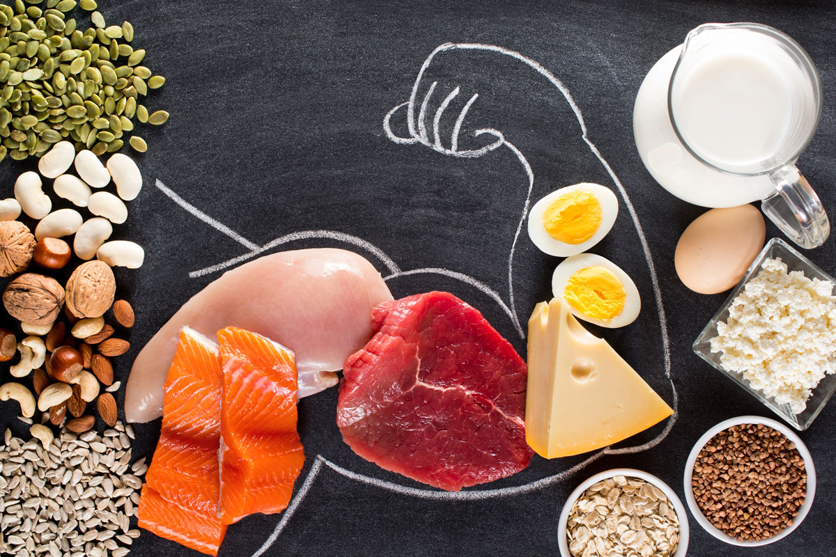 Michael Loehr - The Power of Protein - Page Title Photo